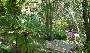 puertecita tropical paradise