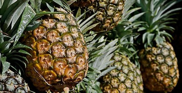 meat cuts pineapple whole