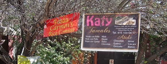 la bonita katy tamales