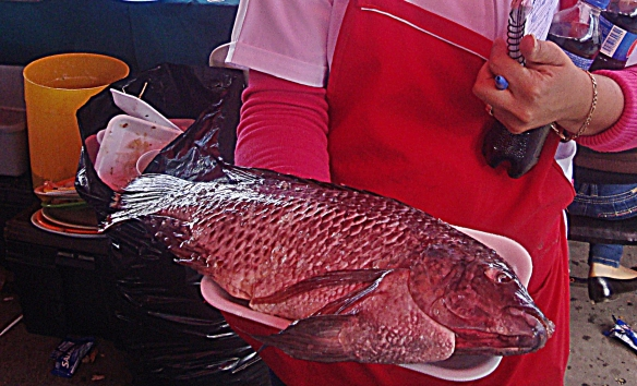 mojarra presented for approval